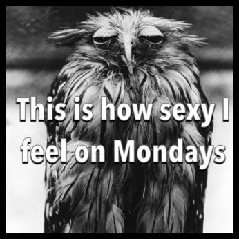 Monday-how-i-feel