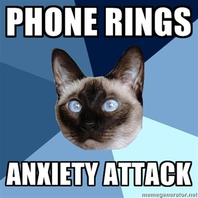 phoneanxietycat