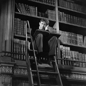 library-book-shelves-lost-in-thought-on-ladder